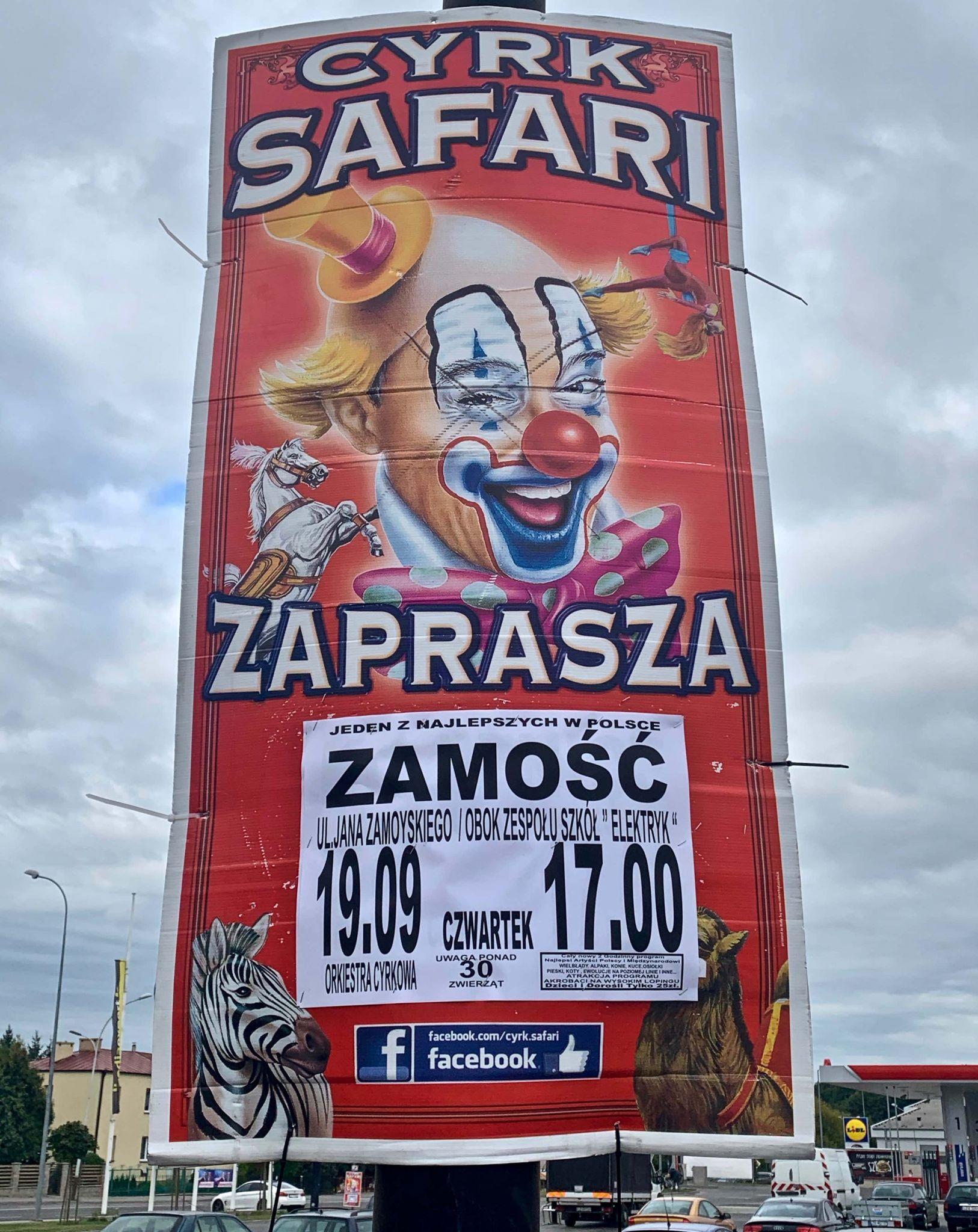 img 3603 Tradycyjny Cyrk Safari wystąpi w Zamościu. Wybieracie się?