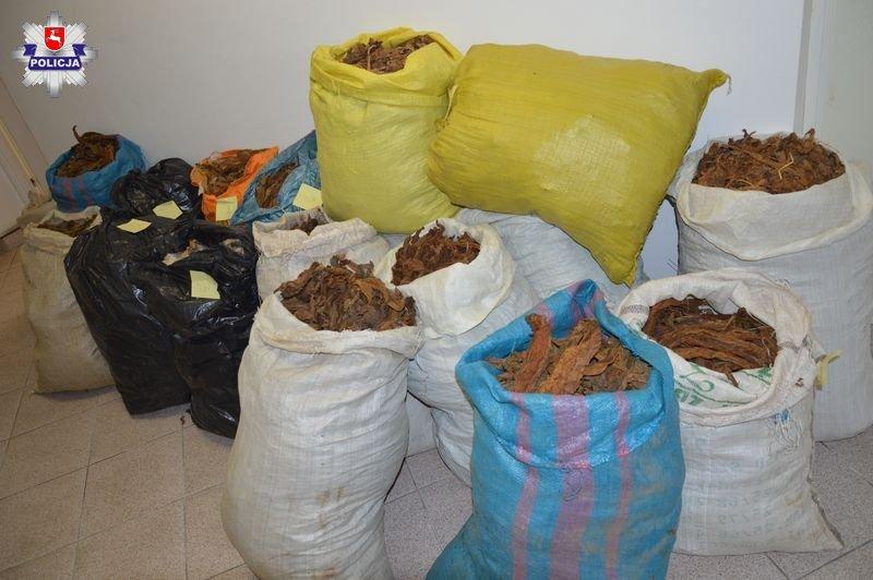 68 155764 Ponad 70 kg nielegalnego tytoniu u 64-latki