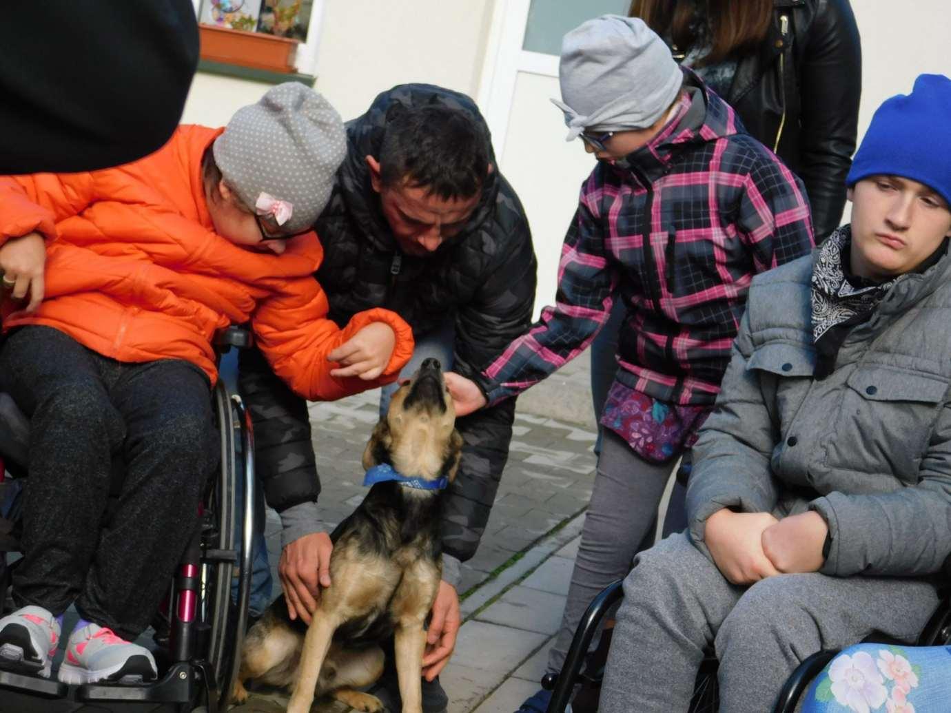 72654118 2573603676033425 4075600213564194816 o Zamość: Niepełnosprawni pomagają zwierzętom