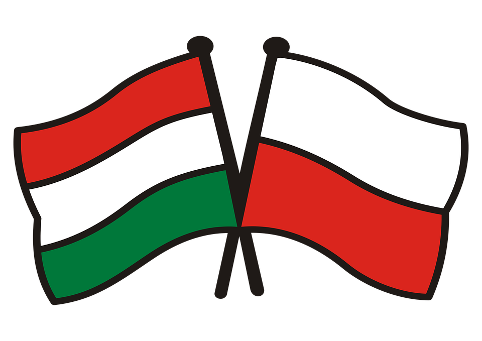 poland hungary 2269853 960 720 Zamość: Historia relacji polsko-węgierskich. Spotkanie z Istvánem Kovácsem