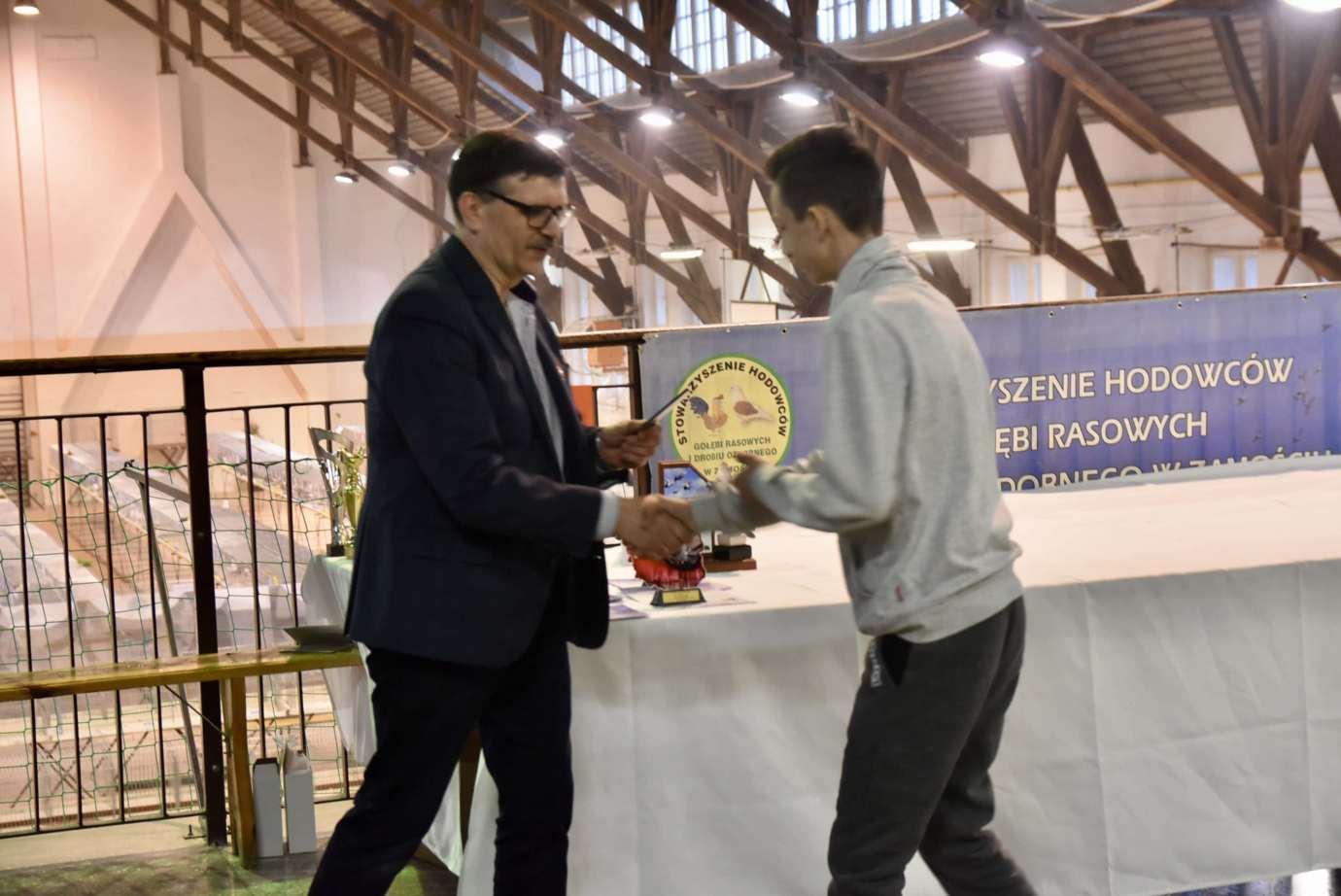 dsc 3805 XI Zamojska Wystawa Gołębi Rasowych i Drobiu Ozdobnego - publikujemy nazwiska i zdjęcia nagrodzonych
