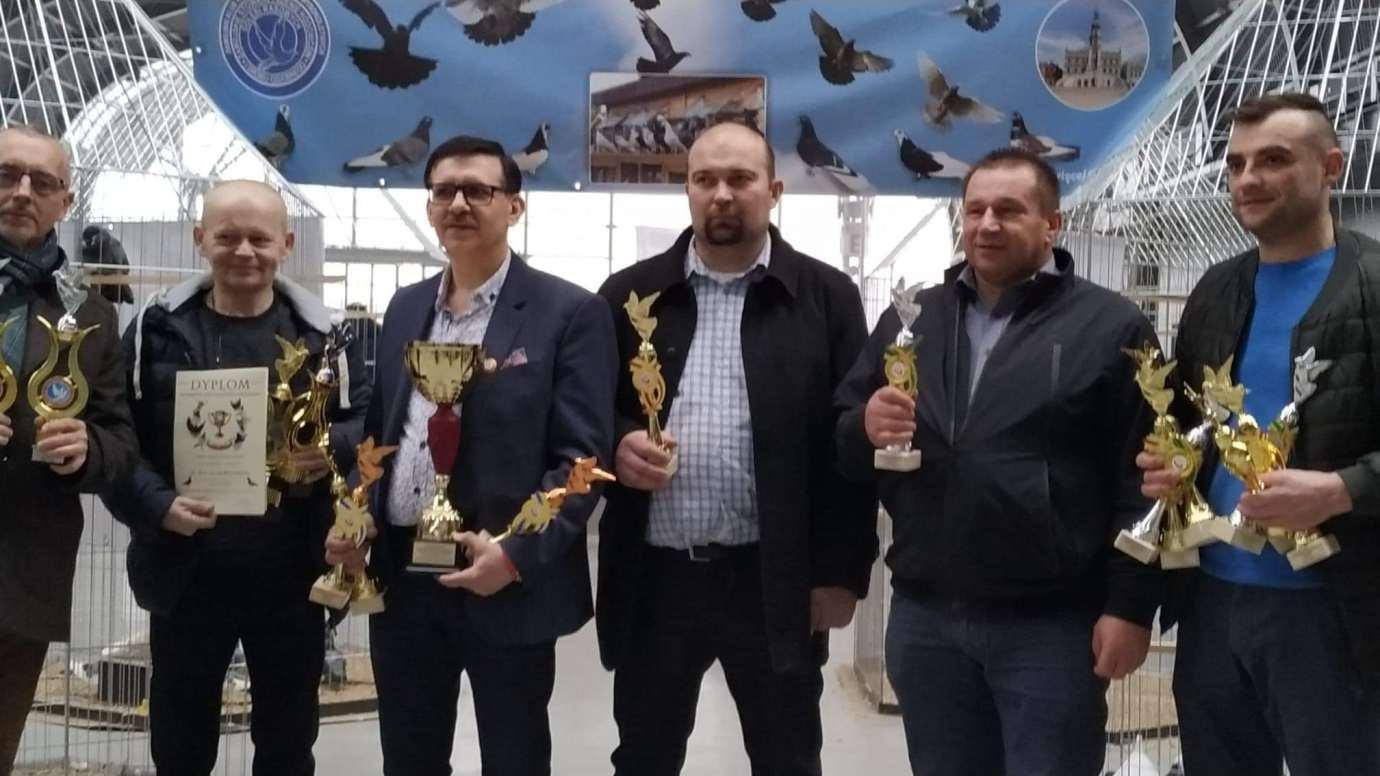 received 177451223628310 Zamojscy gołębiarze przywieźli z Kielc cenne trofea [ZDJĘCIA]