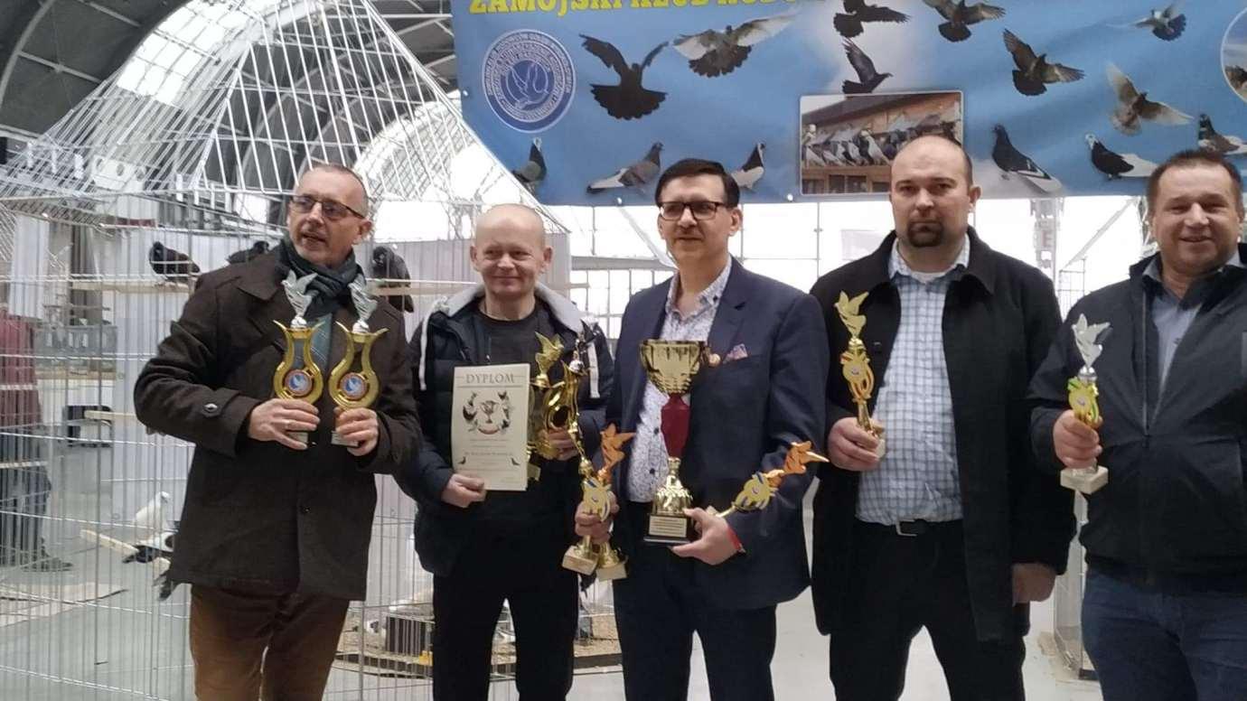 received 824398911414407 Zamojscy gołębiarze przywieźli z Kielc cenne trofea [ZDJĘCIA]