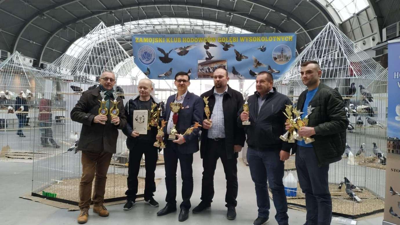 to Zamojscy gołębiarze przywieźli z Kielc cenne trofea [ZDJĘCIA]
