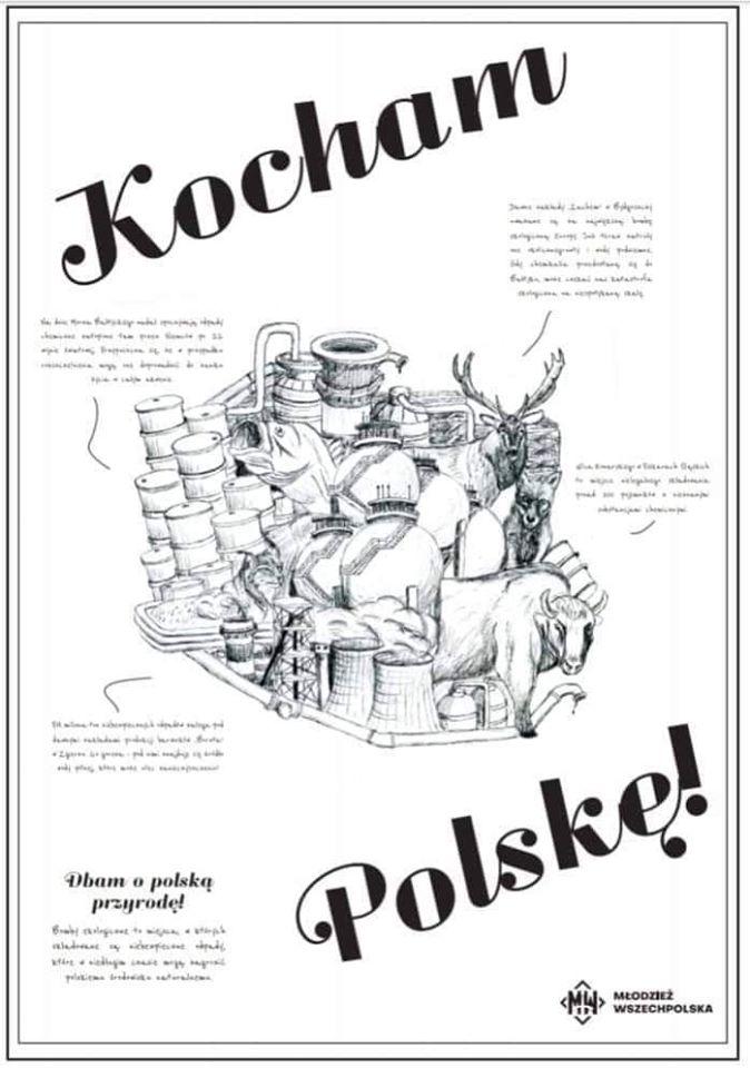 kocham polske plakat Zamość: