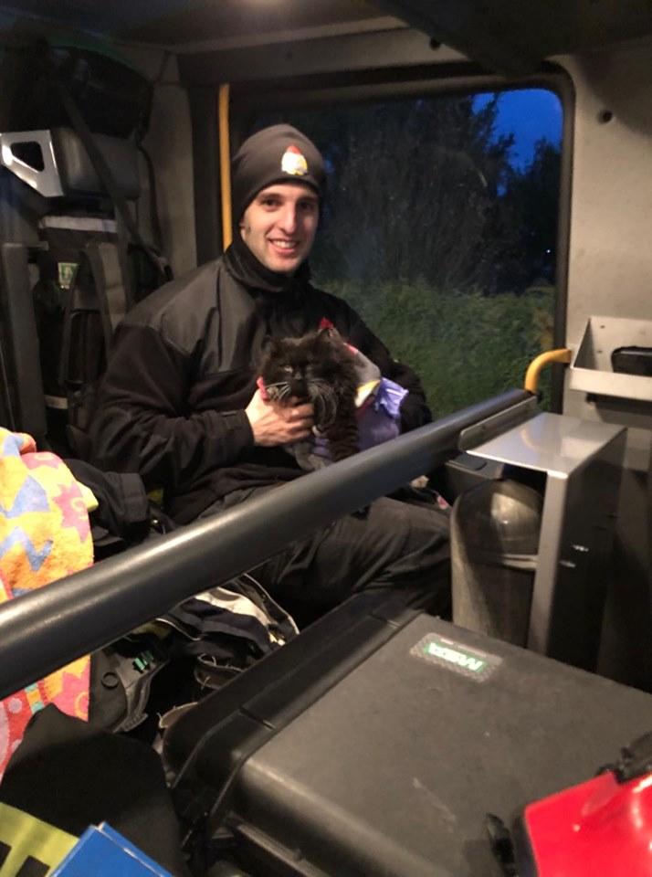 kot4 Gm. Zamość: Strażacy uratowali z pożaru domu trzy koty. Podali im tlen [ZDJĘCIA]
