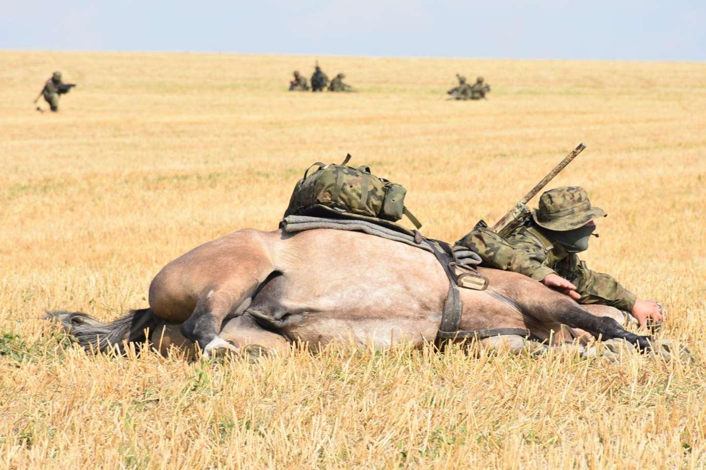 dsc 0582 1 100. rocznica Bitwy pod Komarowem odbędzie się w planowanym terminie.