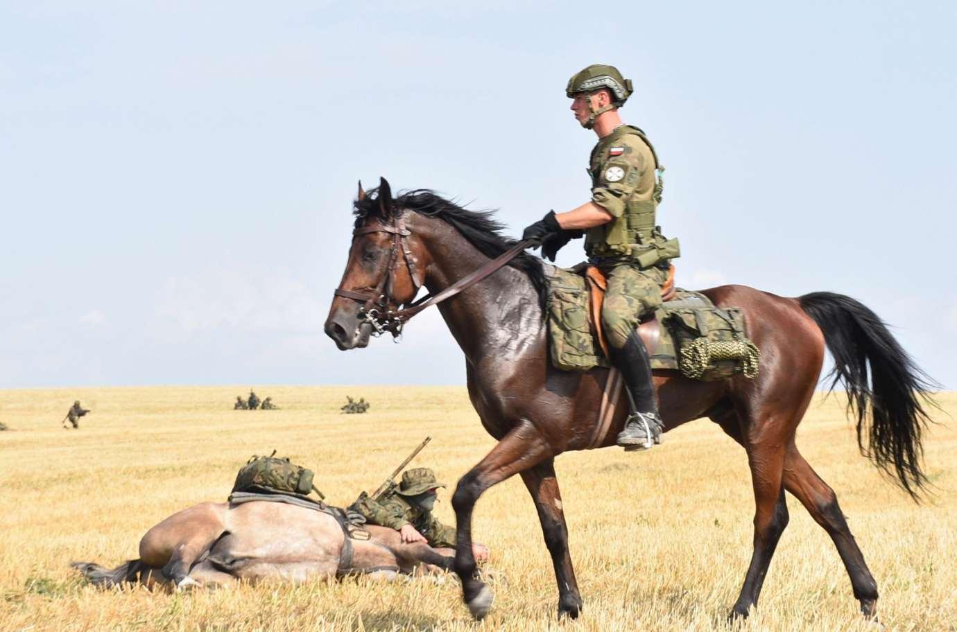 dsc 0589 100. rocznica Bitwy pod Komarowem odbędzie się w planowanym terminie.