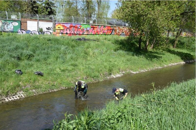 lab 1 1 Rzeka pełna śmieci. Ruszyło wielkie sprzątanie Łabuńki.