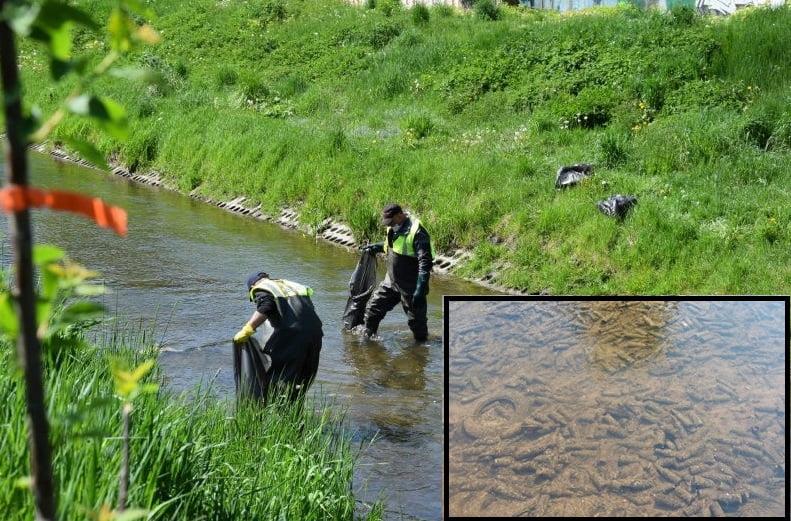lab 3 Rzeka pełna śmieci. Ruszyło wielkie sprzątanie Łabuńki.