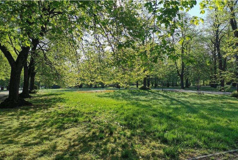park Zamość: Pierwsze koszenie miejskich trawników po zimie