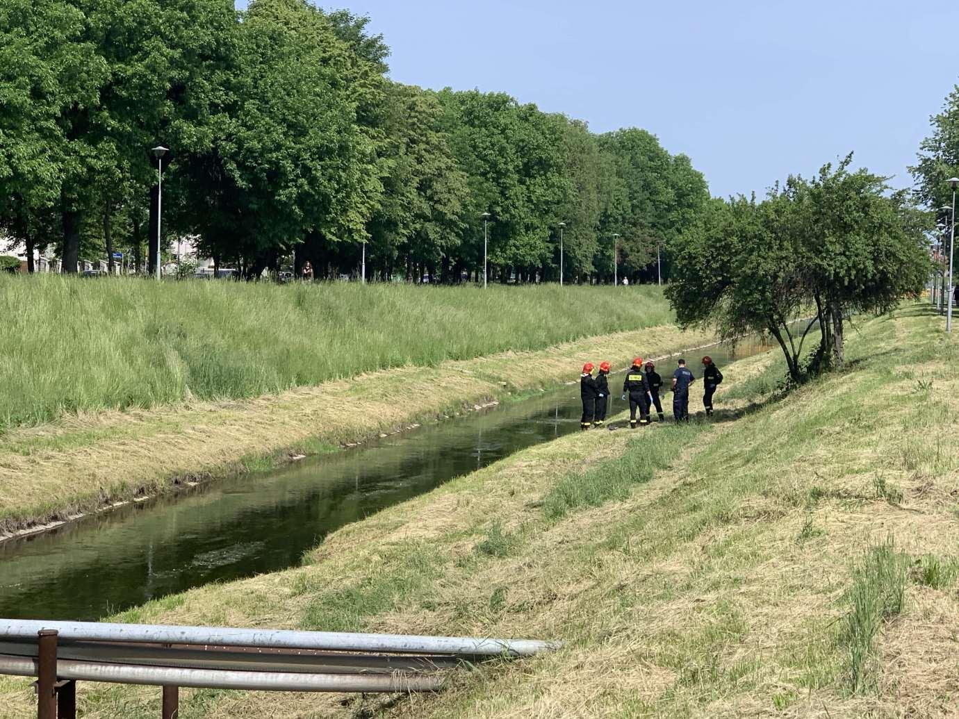 img 9376 2 W Łabuńce znaleziono ciało mężczyzny