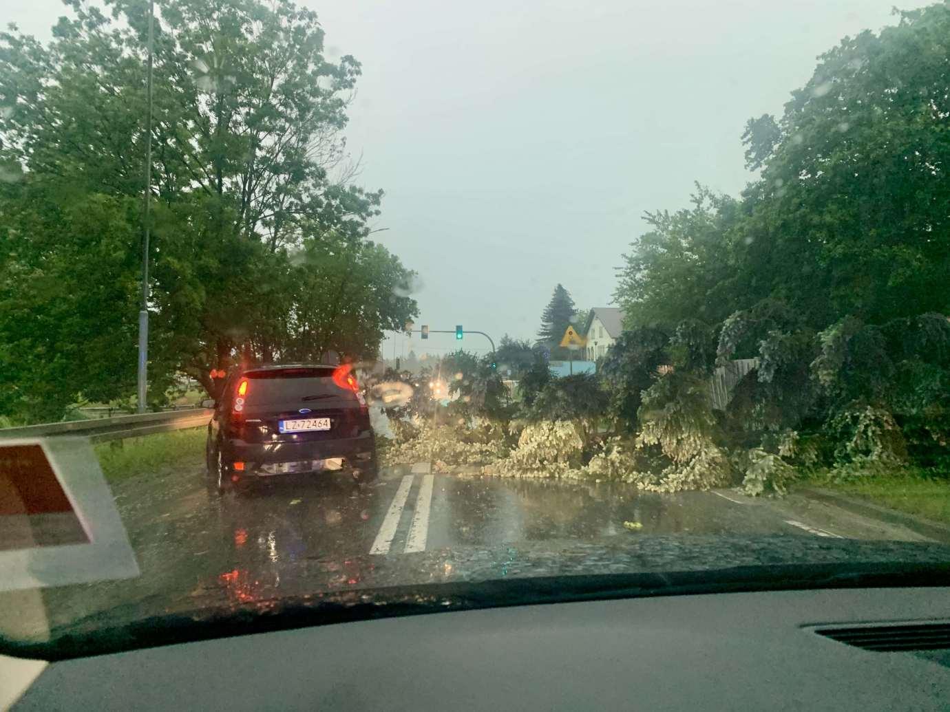 img 9500 3 uszkodzone auta na Królowej Jadwigi, powalone drzewa. Kolejne zdjęcia i FILM