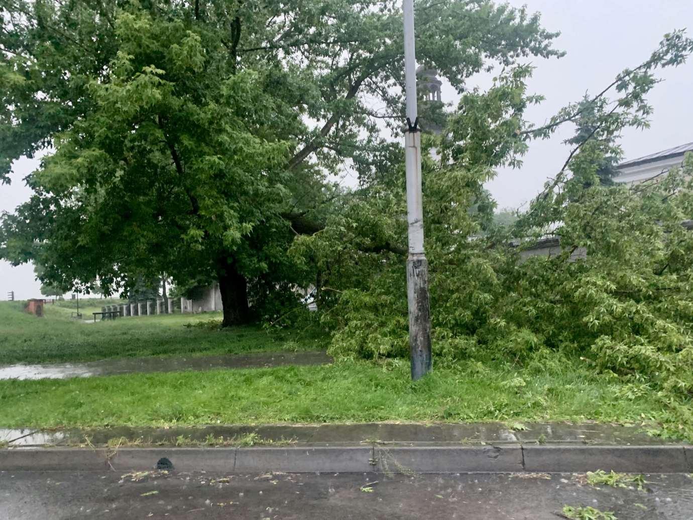 img 9504 3 uszkodzone auta na Królowej Jadwigi, powalone drzewa. Kolejne zdjęcia i FILM