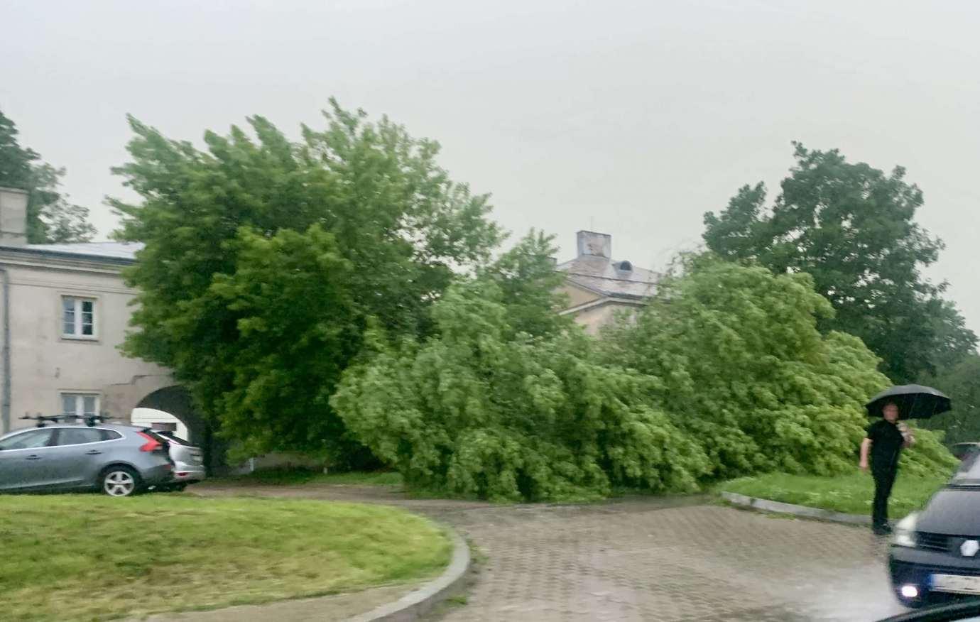 img 9505 3 uszkodzone auta na Królowej Jadwigi, powalone drzewa. Kolejne zdjęcia i FILM