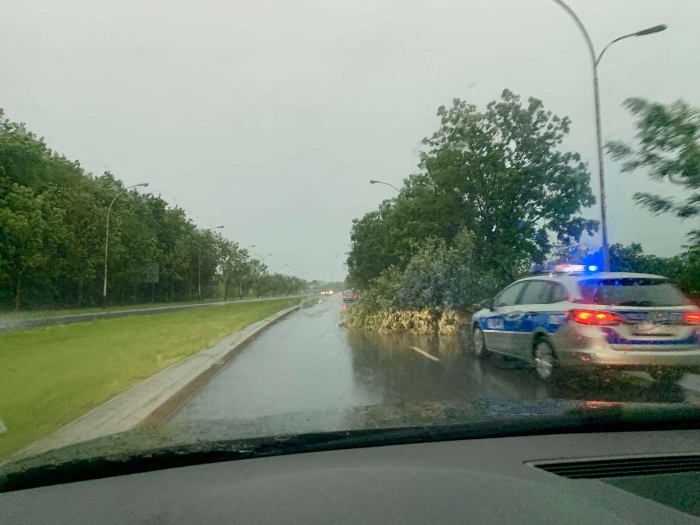 img 9513 3 uszkodzone auta na Królowej Jadwigi, powalone drzewa. Kolejne zdjęcia i FILM