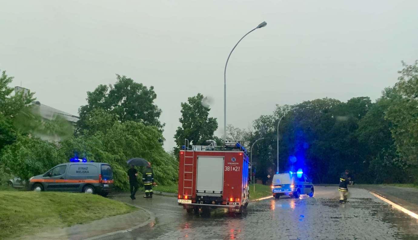 img 9525 3 uszkodzone auta na Królowej Jadwigi, powalone drzewa. Kolejne zdjęcia i FILM