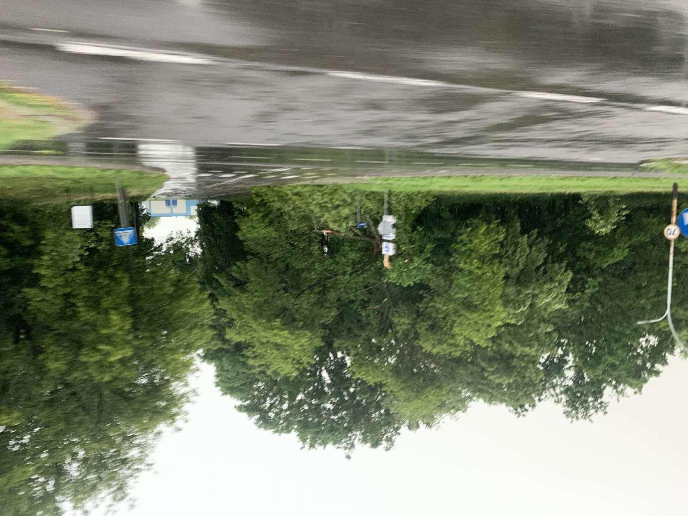 img 9527 3 uszkodzone auta na Królowej Jadwigi, powalone drzewa. Kolejne zdjęcia i FILM