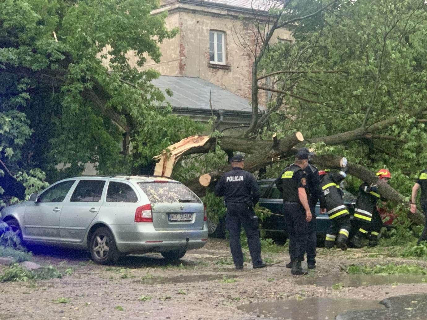img 9529 3 uszkodzone auta na Królowej Jadwigi, powalone drzewa. Kolejne zdjęcia i FILM