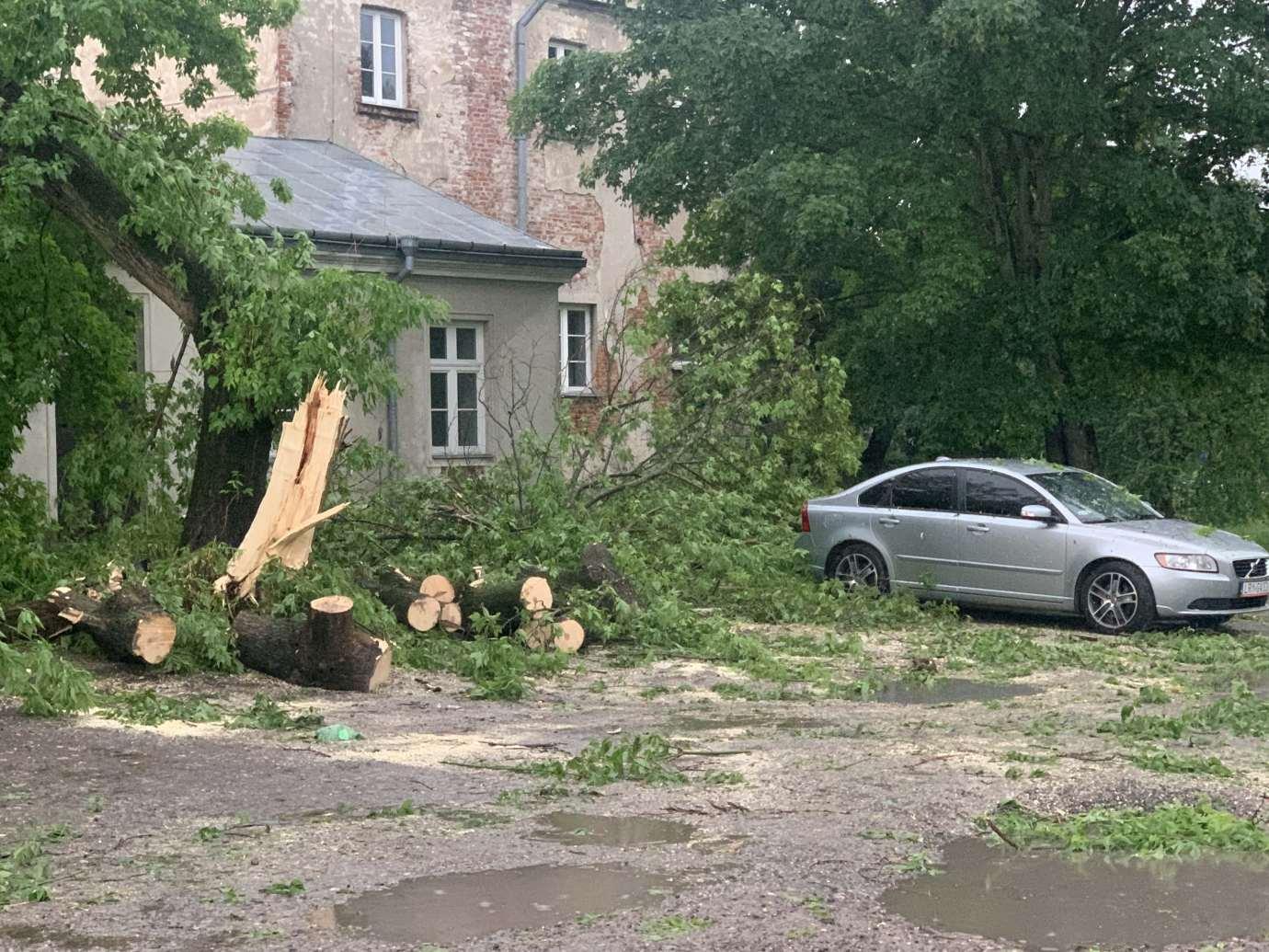 img 9536 3 uszkodzone auta na Królowej Jadwigi, powalone drzewa. Kolejne zdjęcia i FILM