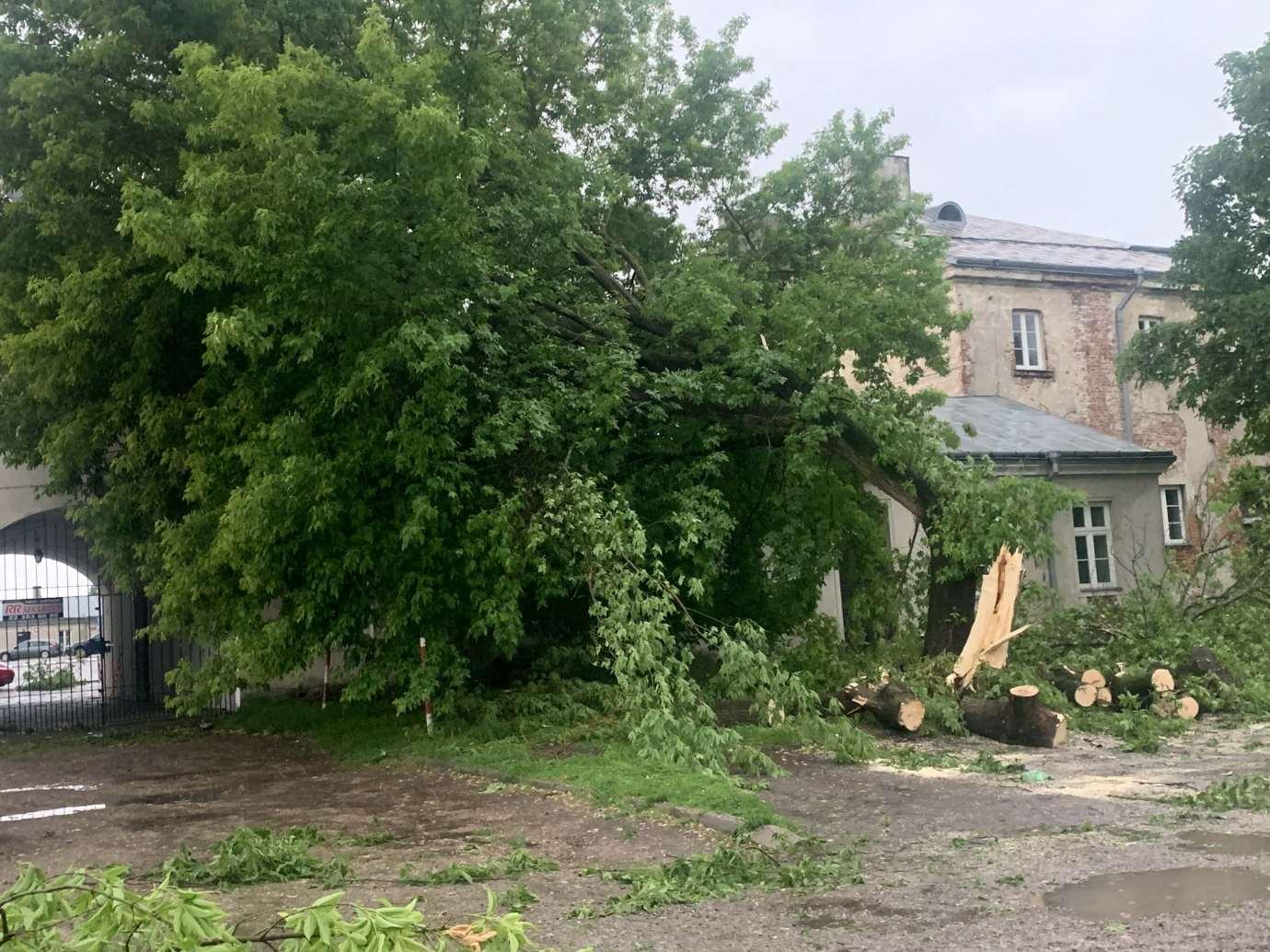 img 9537 3 uszkodzone auta na Królowej Jadwigi, powalone drzewa. Kolejne zdjęcia i FILM