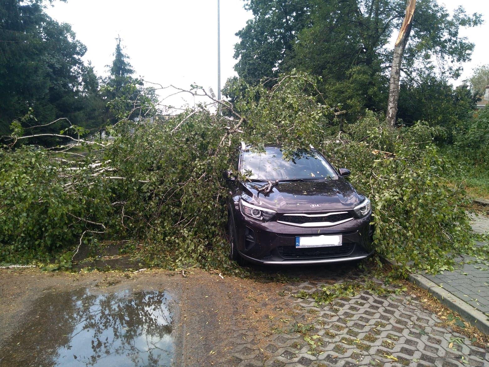 burza 5 Zerwane dachy, połamane drzewa, uszkodzone samochody. Straty po burzy, która przeszła nad Zamojszczyzną