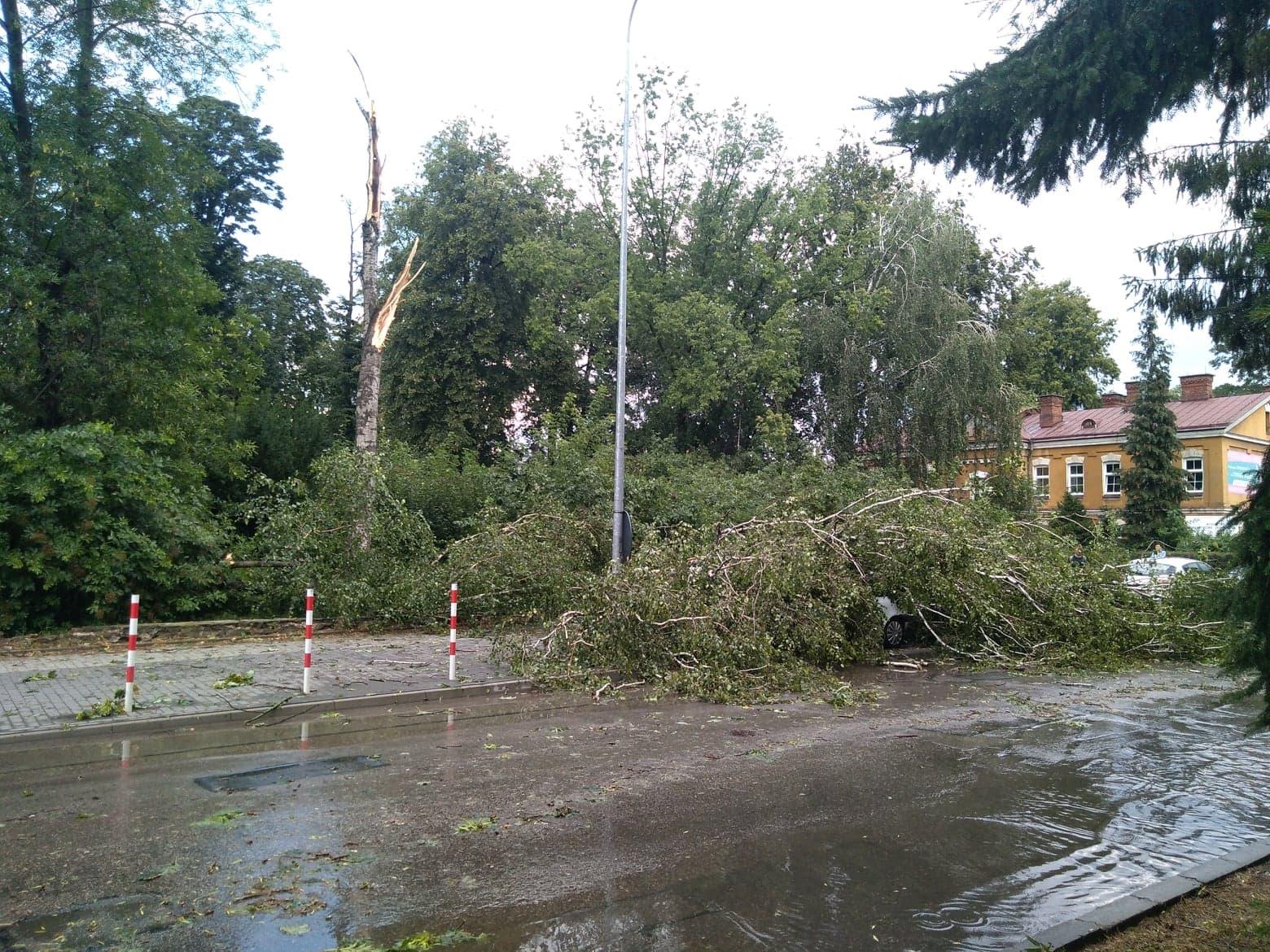 burza 9 Zerwane dachy, połamane drzewa, uszkodzone samochody. Straty po burzy, która przeszła nad Zamojszczyzną
