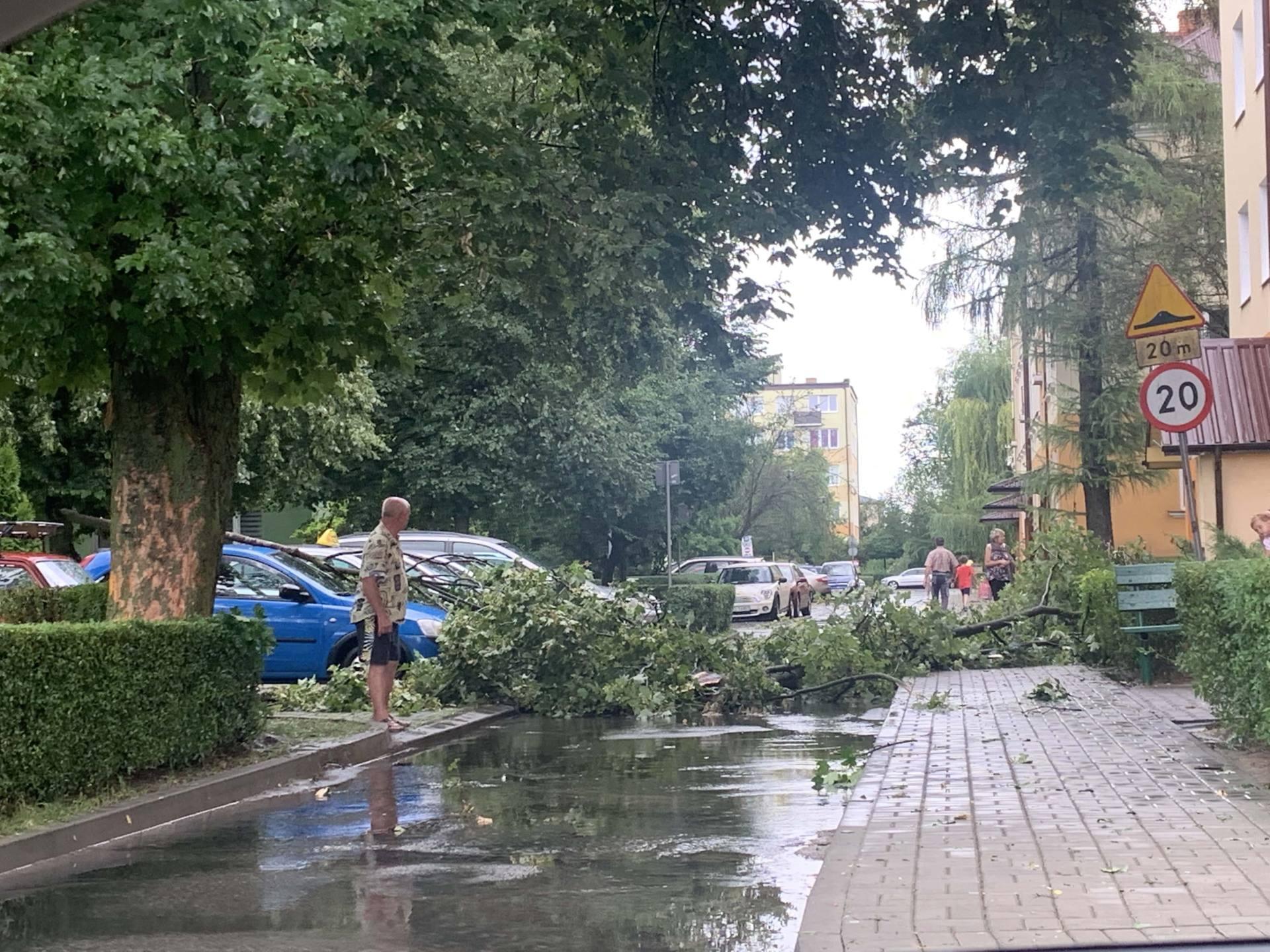 img 0951 Zerwane dachy, połamane drzewa, uszkodzone samochody. Straty po burzy, która przeszła nad Zamojszczyzną