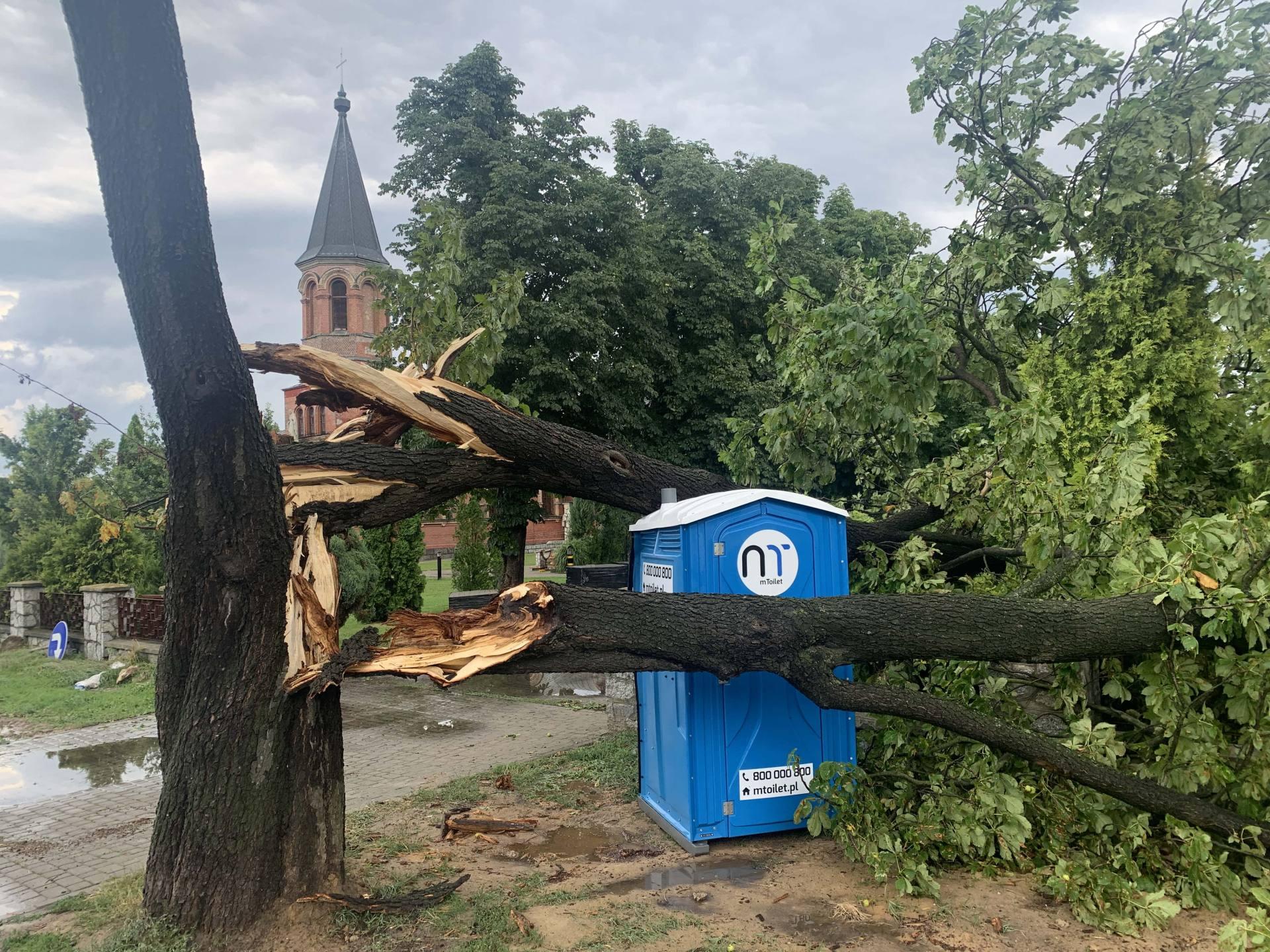img 0957 Zerwane dachy, połamane drzewa, uszkodzone samochody. Straty po burzy, która przeszła nad Zamojszczyzną