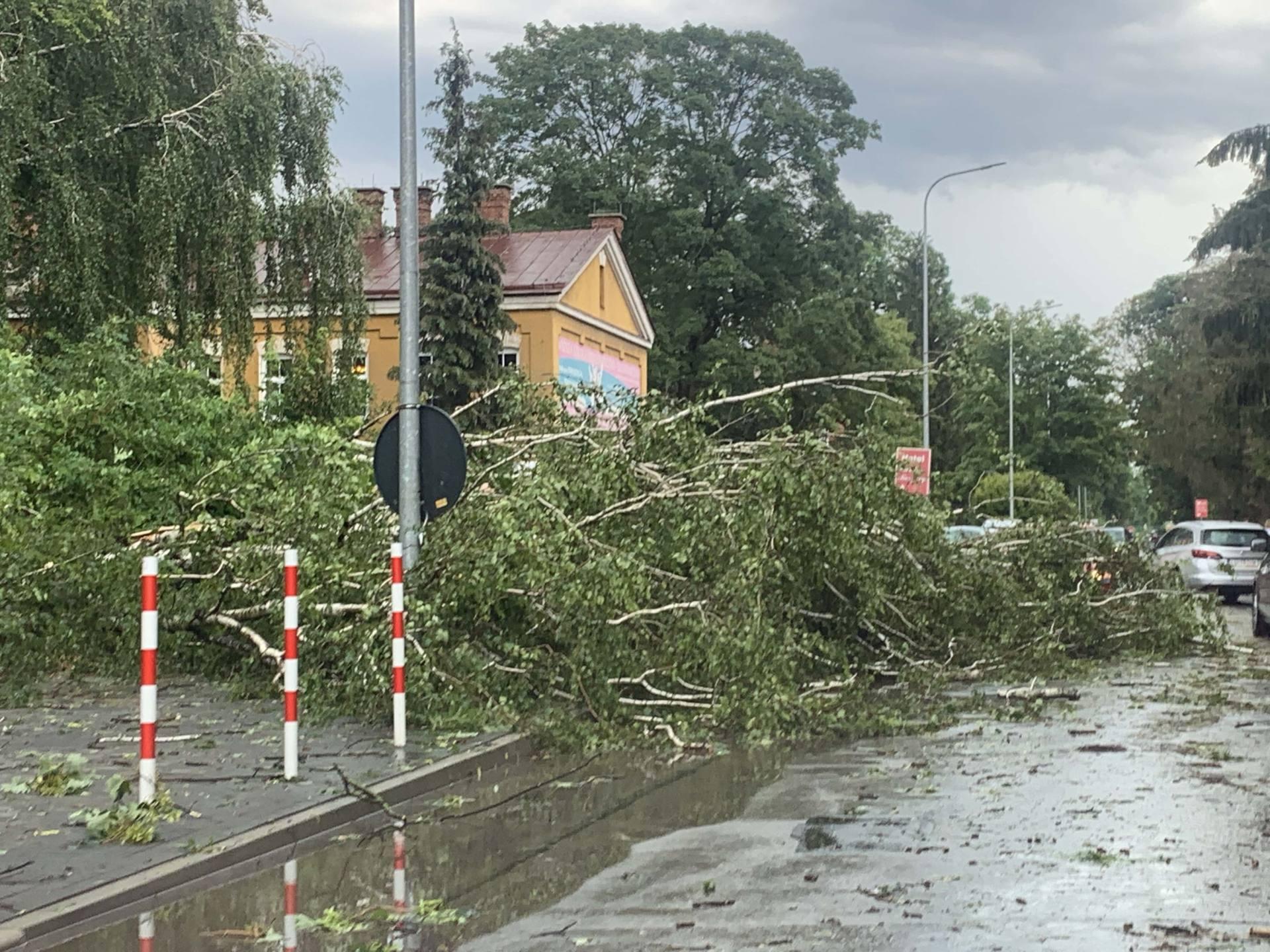 img 0959 Zerwane dachy, połamane drzewa, uszkodzone samochody. Straty po burzy, która przeszła nad Zamojszczyzną