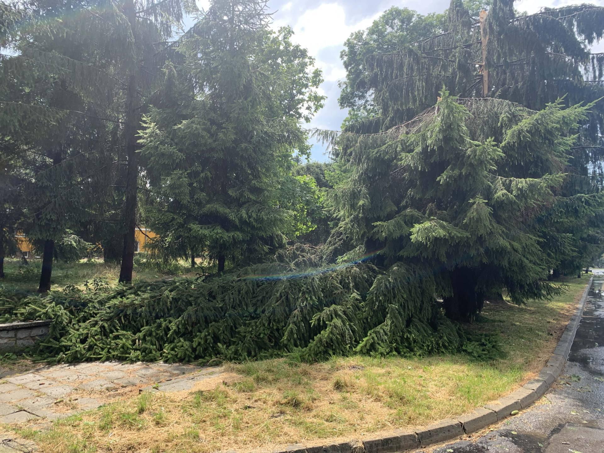 img 0962 Zerwane dachy, połamane drzewa, uszkodzone samochody. Straty po burzy, która przeszła nad Zamojszczyzną