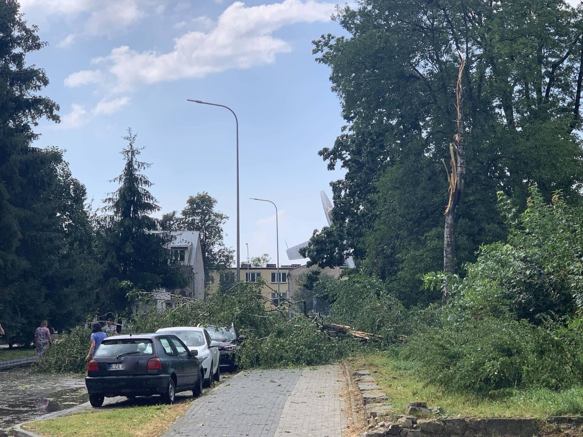 img 0964 Zerwane dachy, połamane drzewa, uszkodzone samochody. Straty po burzy, która przeszła nad Zamojszczyzną
