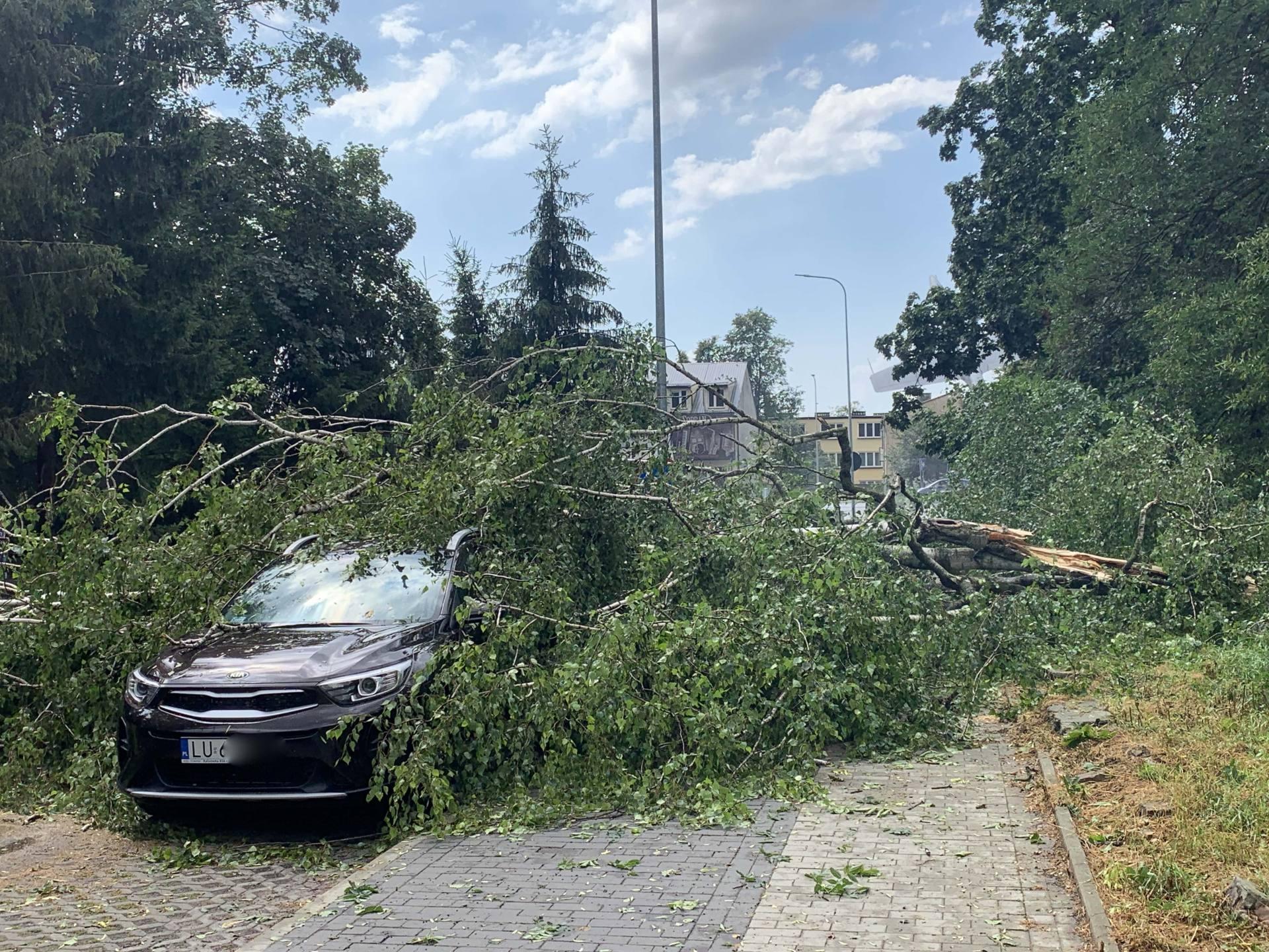 img 0965 Zerwane dachy, połamane drzewa, uszkodzone samochody. Straty po burzy, która przeszła nad Zamojszczyzną
