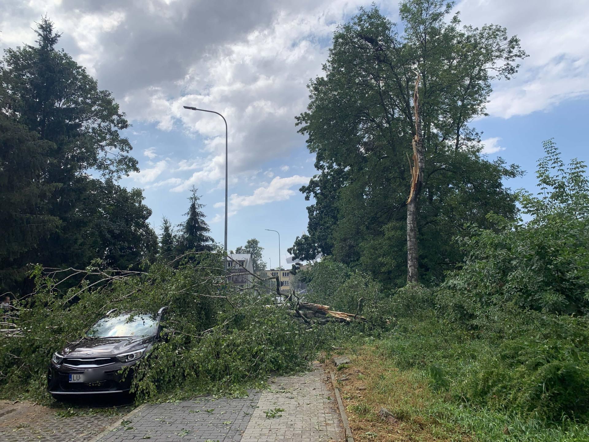 img 0966 Zerwane dachy, połamane drzewa, uszkodzone samochody. Straty po burzy, która przeszła nad Zamojszczyzną