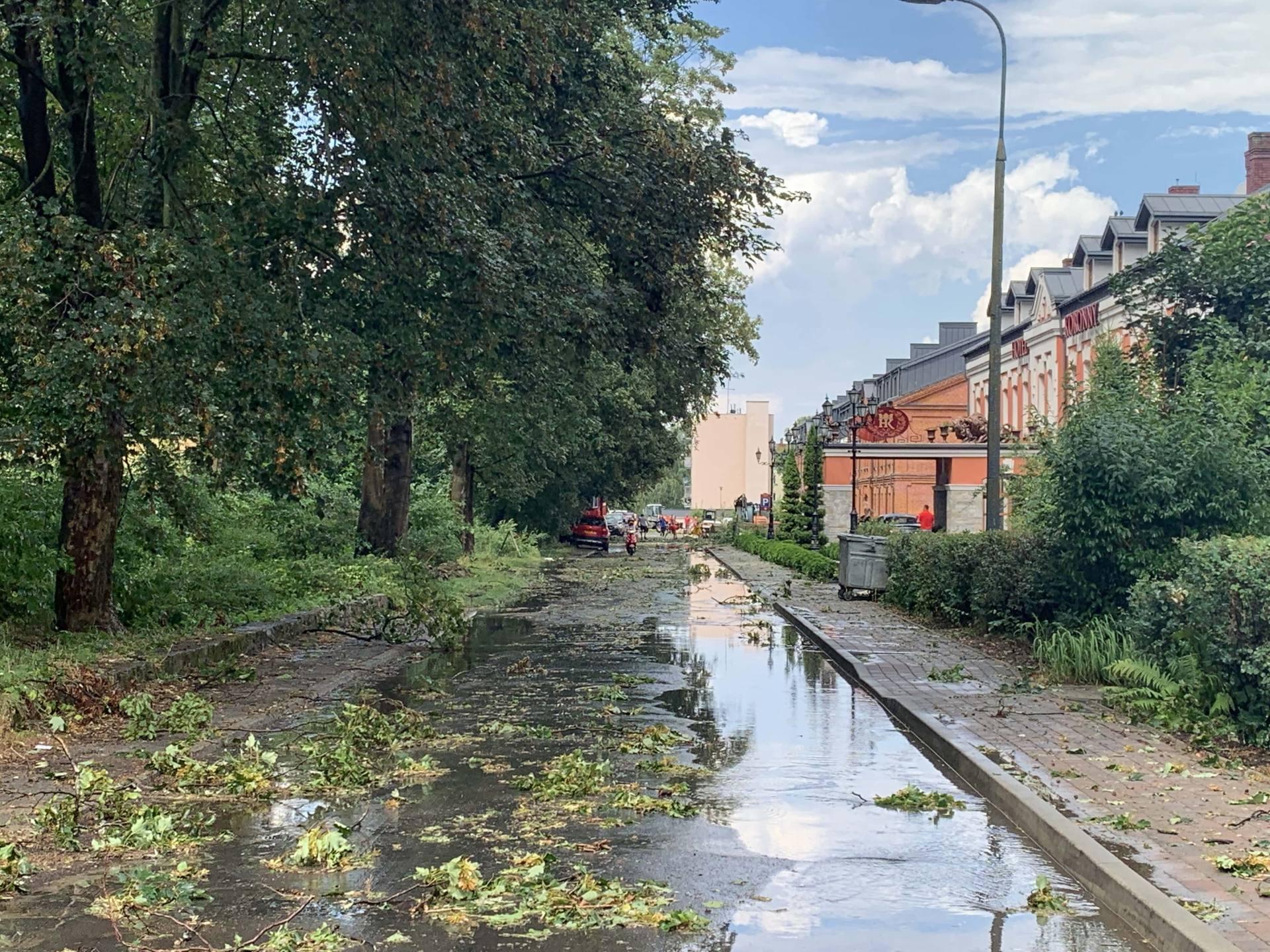 img 0967 Zerwane dachy, połamane drzewa, uszkodzone samochody. Straty po burzy, która przeszła nad Zamojszczyzną