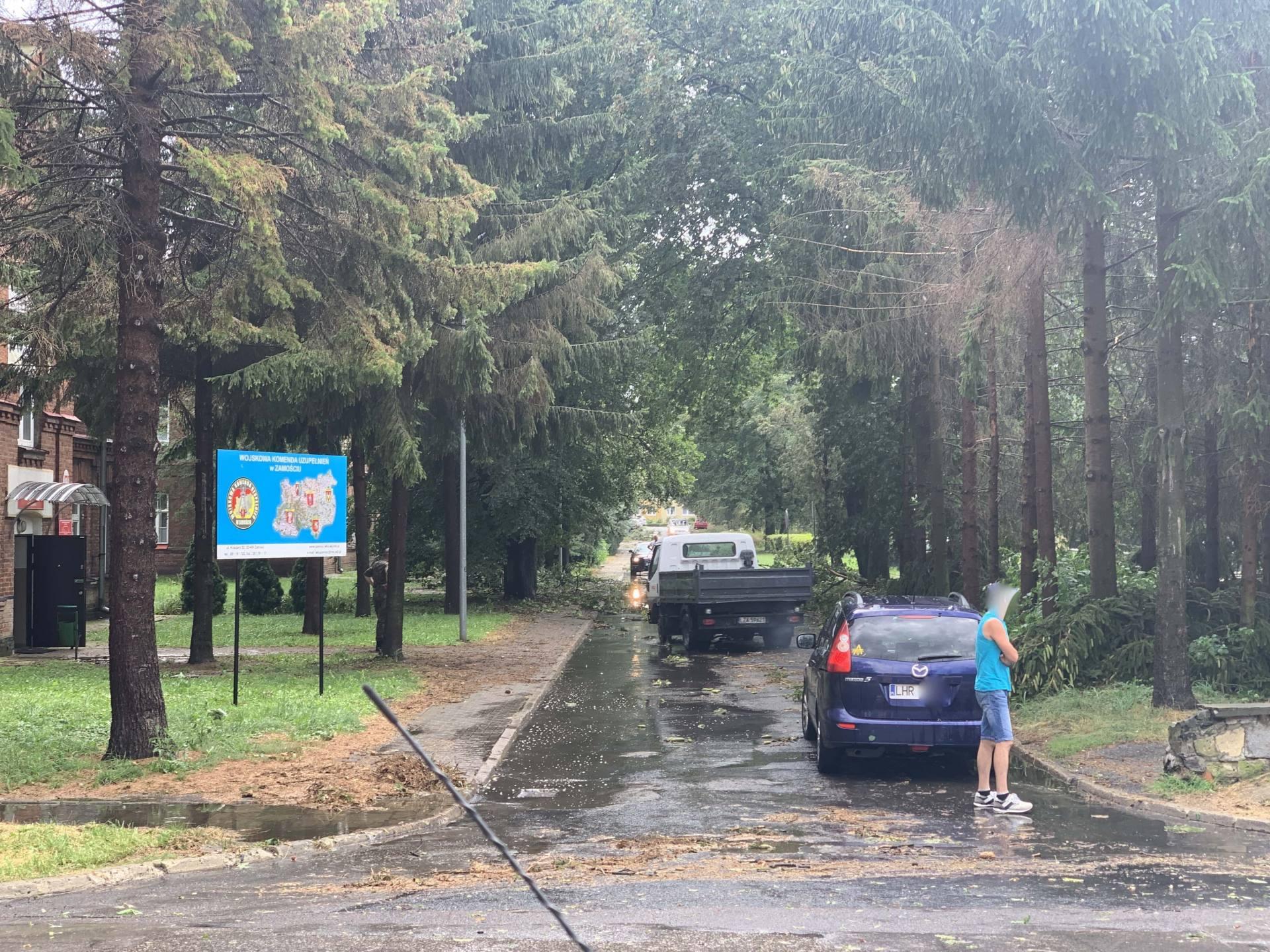 img 0969 Zerwane dachy, połamane drzewa, uszkodzone samochody. Straty po burzy, która przeszła nad Zamojszczyzną