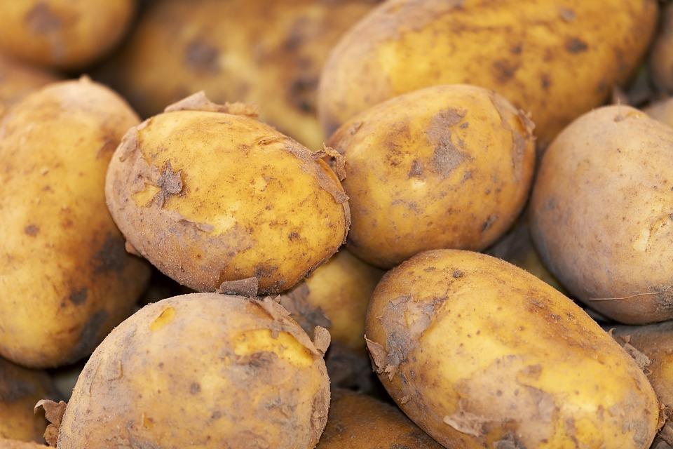 potato 3440360 960 720 Zakupił przez internet telefon za ponad 1500 zł, zamiast niego dostał... ziemniaki.