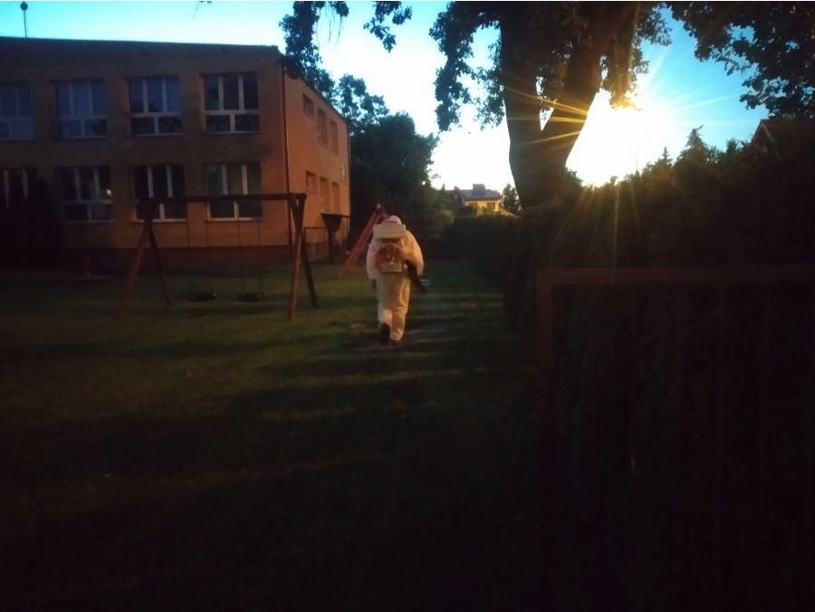 zrzut ekranu 2020 07 27 o 13 03 37 Hrubieszów wypowiedział wojnę komarom.