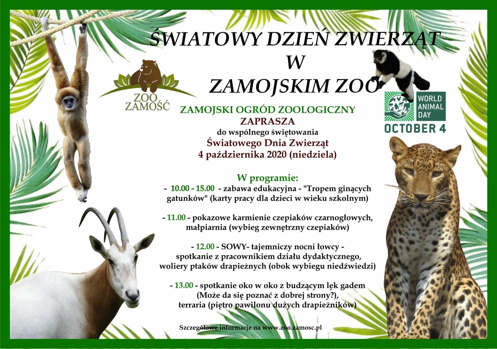 120603301 3486458641433509 7510472174629924012 o ZAMOŚĆ: Atrakcje w ZOO z okazji Światowego Dnia Zwierząt.