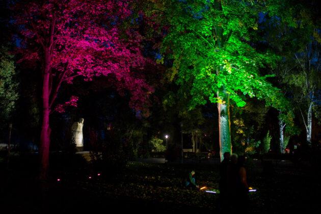 121250109 2692149461072555 2692112250517966209 o Pokaz iluminacji w Parku Miejskim [ZDJĘCIA]