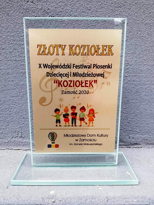 statuetka Zamość: Młodzi wokaliści rywalizowali o nagrodę