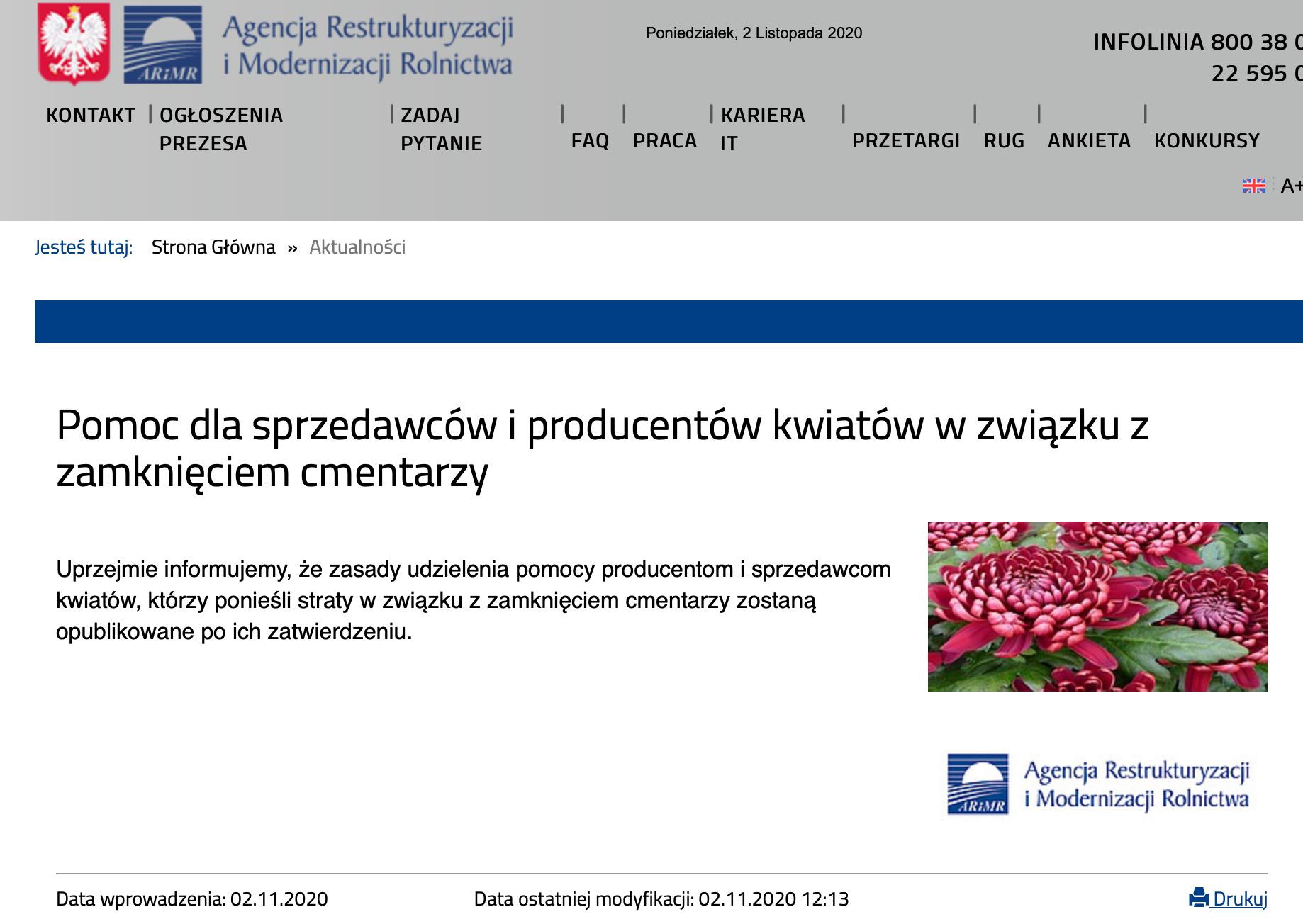zrzut ekranu 2020 11 2 o 13 54 30 Rząd pomoże producentom chryzantem. Płaci 11 zł za doniczkę kwiatów