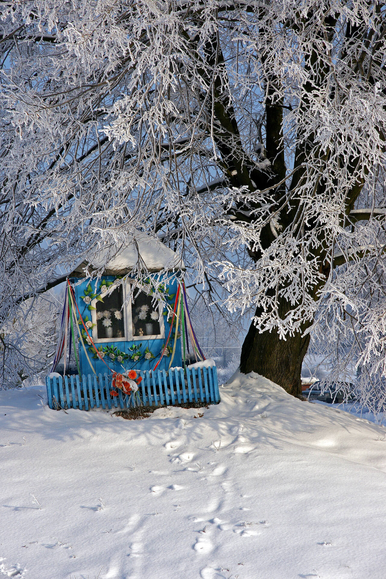 dsc03115 Trwa zimowy foto-konkurs. GOK Gminy Zamość zaprasza do zabawy!