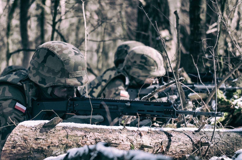 2 lbot rozwoj wot 3 Nowa brygada i batalion WOT