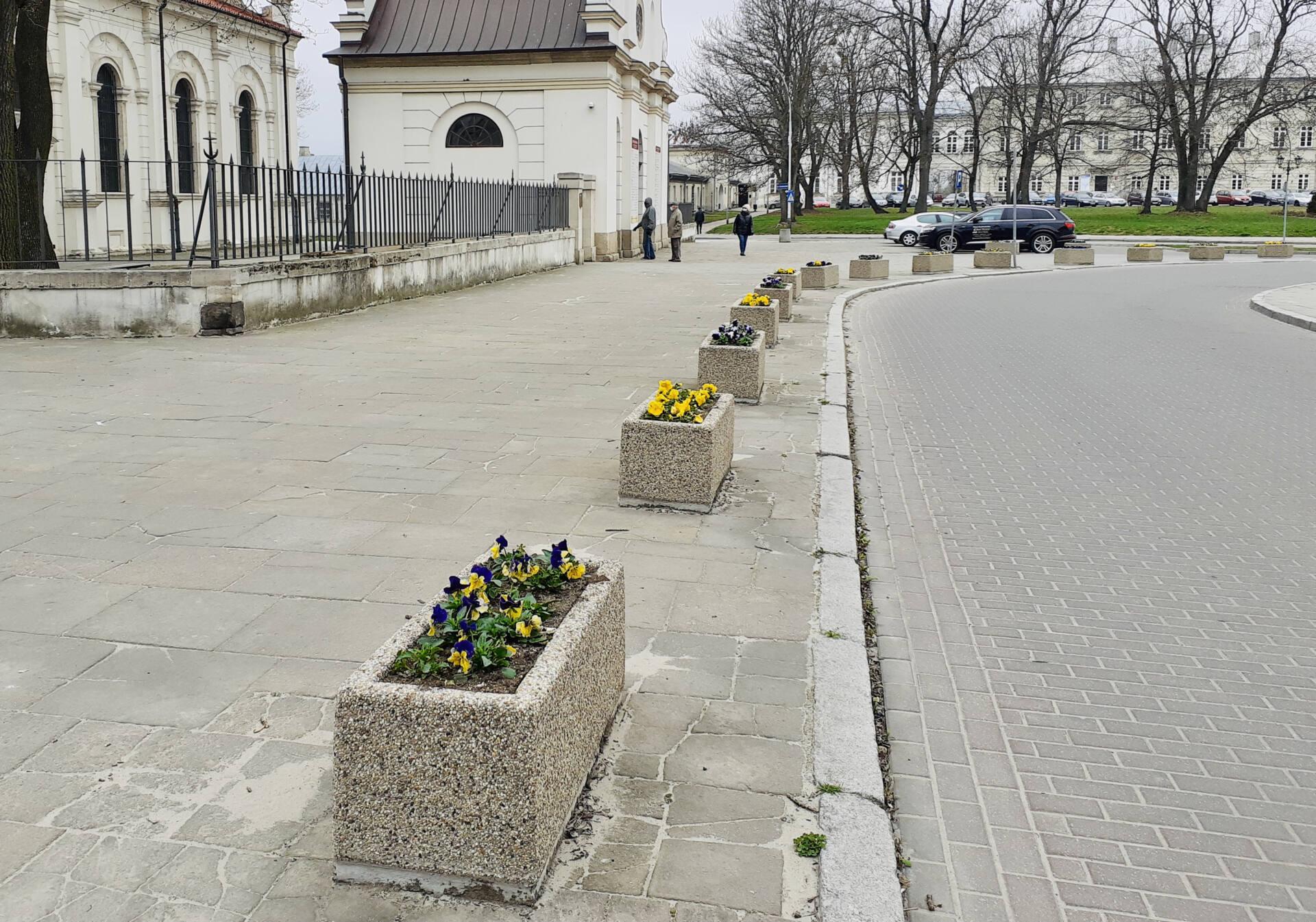 20210413 115114 Miasto rozkwita na wiosnę.