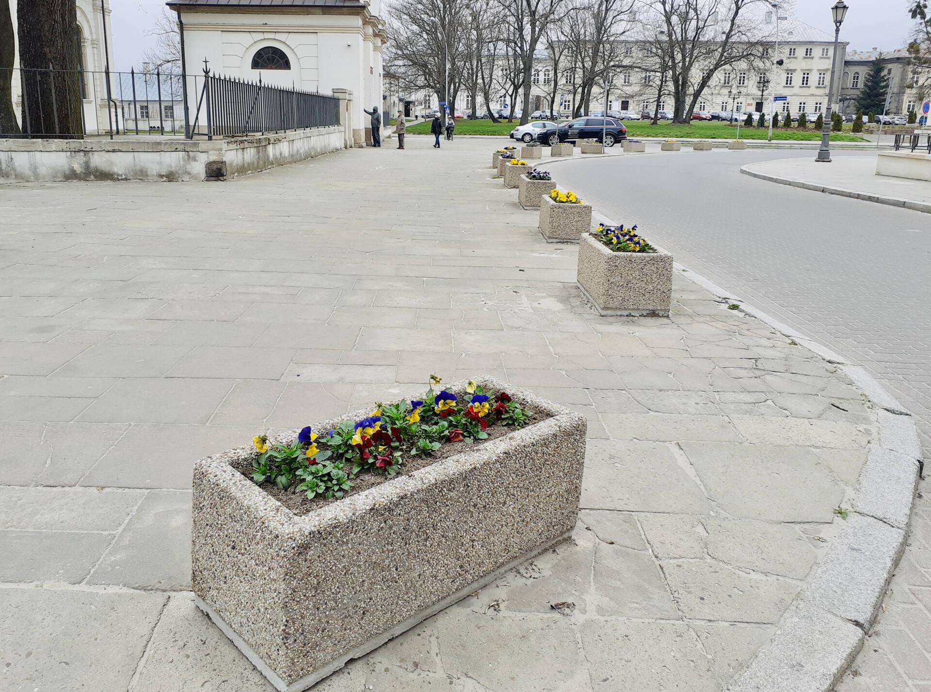 20210413 115123 Miasto rozkwita na wiosnę.