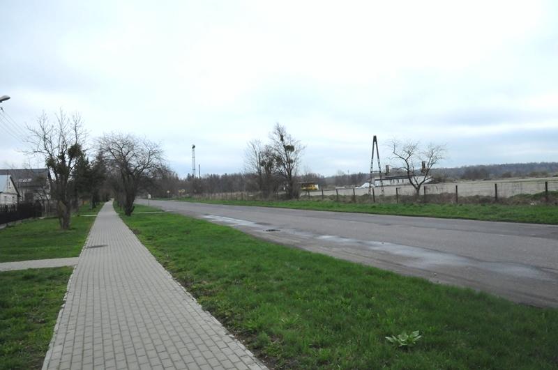 news img 441 725 1619435934 W Szczebrzeszynie przybyło drzew.