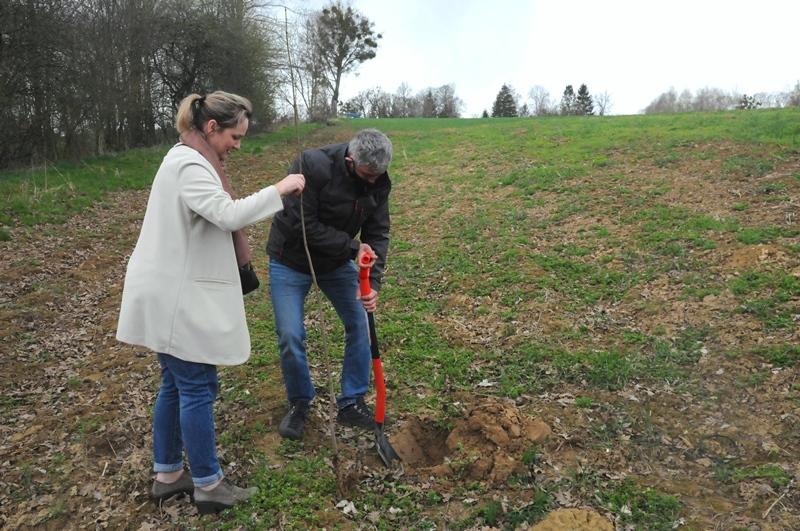 news img 441 729 1619435934 W Szczebrzeszynie przybyło drzew.