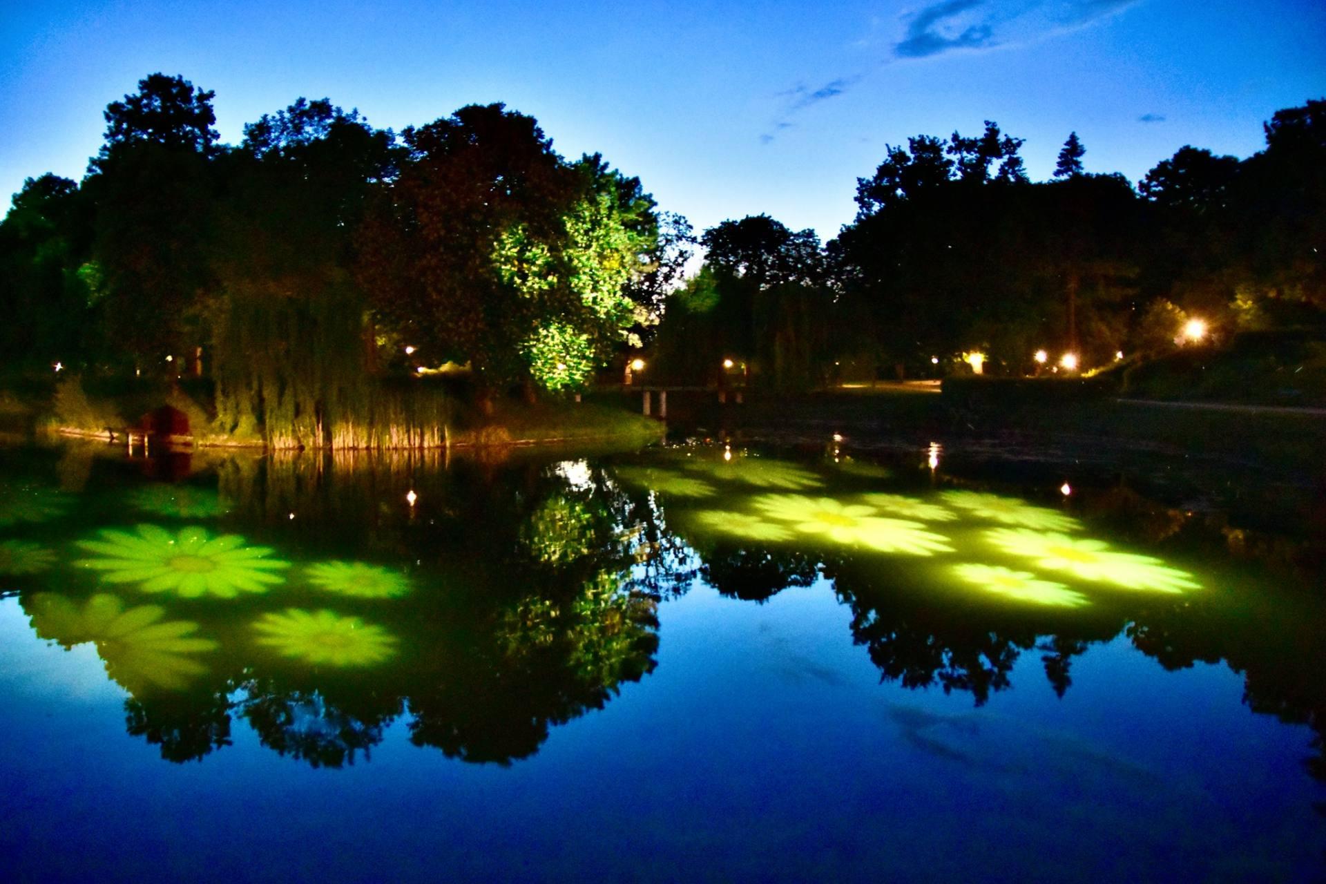 198134396 2996449390625178 5157676747536445912 n Noc Kupały w zamojskim parku.