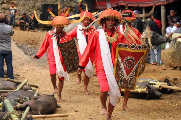 6 wojownicy podczas ceremonii pogrzebowej w tana toraja Wybierz się w podróż do Indonezji z Zamojskim Domem Kultury